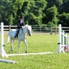crewehill-bridle-path-show-2014-02
