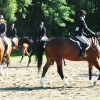 crewehill-bridle-path-show-2014-03