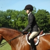 crewehill-bridle-path-show-2014-05