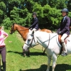 crewehill-bridle-path-show-2014-12