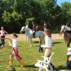 crewehill-bridle-path-show-2014-22